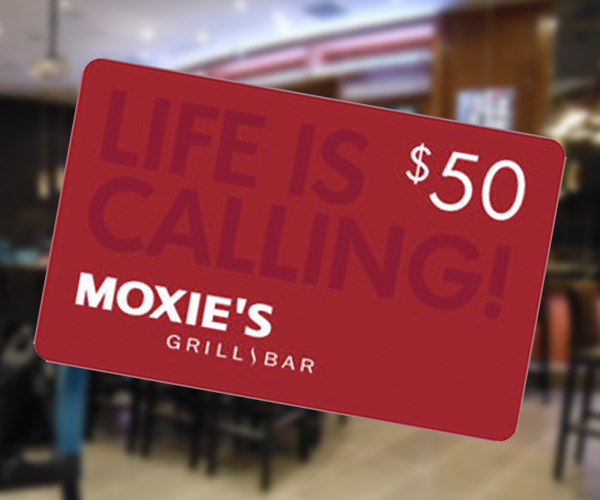 auction-moxies